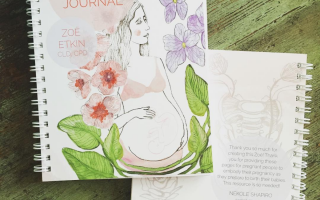 pregnancy journal by zoe etkin